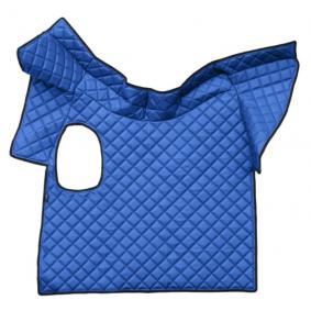 F-CORE Fußmattensatz RH12 BLUE