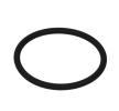 OEM Shaft Seal, manual transmission flange 95534396 from Euroricambi