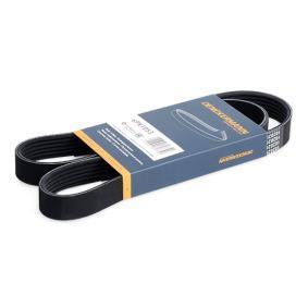 V-Ribbed Belts 6PK1053 OCTAVIA (1Z3) 2.0 TDI MY 2007