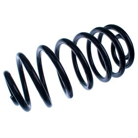 Coil Spring with OEM Number 4 24 334