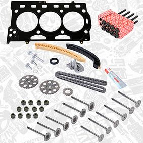 Timing Chain Kit with OEM Number 036 109 601 AL