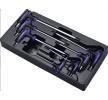 Original HANS 15739695 Werkzeugmodul