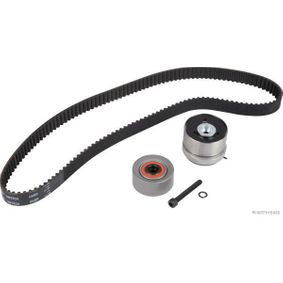 Timing Belt Set with OEM Number 16 06 356