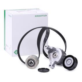 Passat B6 1.9TDI Keilrippenriemensatz INA 529 0468 20 (1.9 TDI Diesel 2006 BXE)