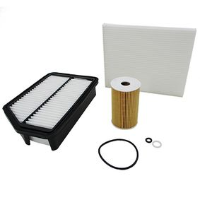 Filter Set with OEM Number S2632 02A500