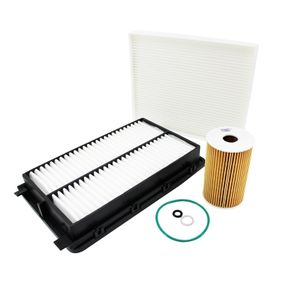 Filter Set with OEM Number S26320-2A500