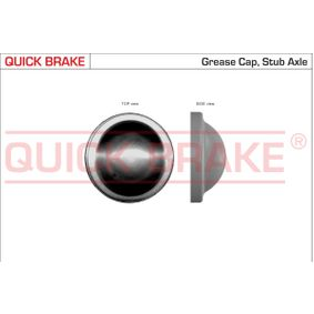 Sealing / Protective Cap with OEM Number 1 206 923