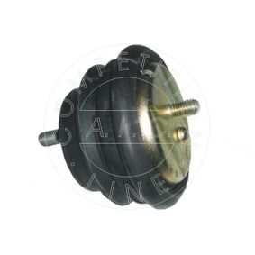 Lagerung, Motor mit OEM-Nummer 22111094365
