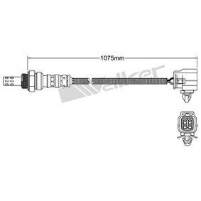 Lambdasonde mit OEM-Nummer LF17-18-861C