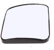OEM Cristal, espejo gran angular TD ZL03-58-007HL de LKQ
