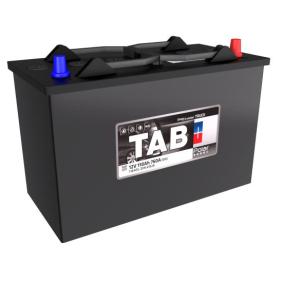 TAB Nutzfahrzeugbatterien B1 , 110 Ah , 12 V , DIN 61028 , 800 A , Bleiakkumulator