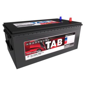 TAB Nutzfahrzeugbatterien 225Ah, 12V, 1300A, B0, Bleiakkumulator