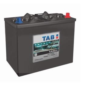 TAB Nutzfahrzeugbatterien B01 , 110 Ah , 12 V , Bleiakkumulator
