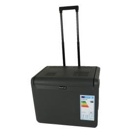 Réfrigérateur de voiture 5966