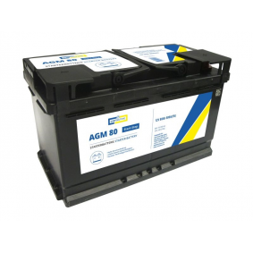 Starterbatterie mit OEM-Nummer 244100001R