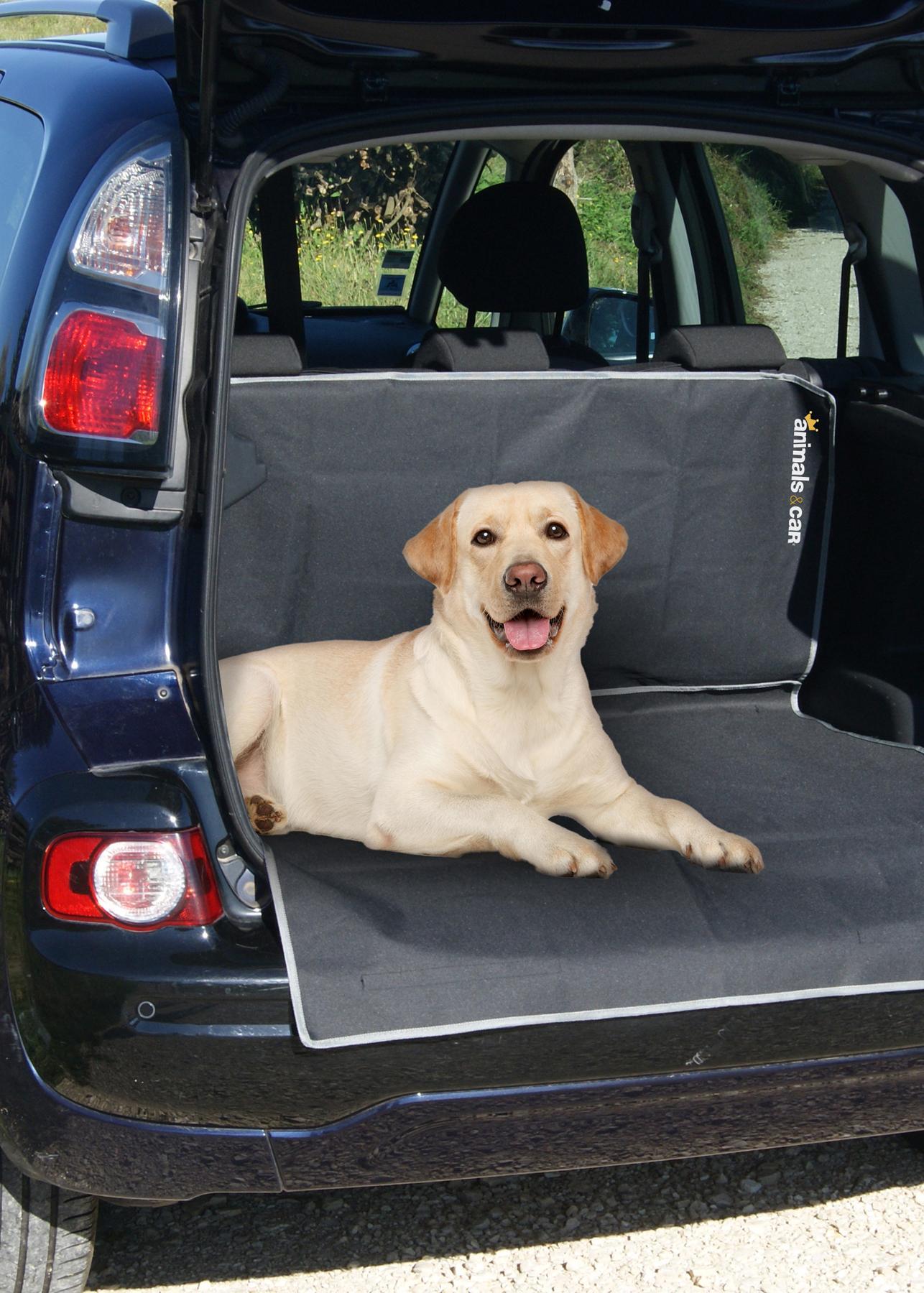 Kutya védőhuzat animals&car 170008 értékelés