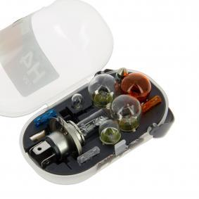 Bulbs Assortment 685205