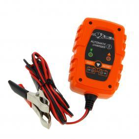 Batterieladegerät 553984