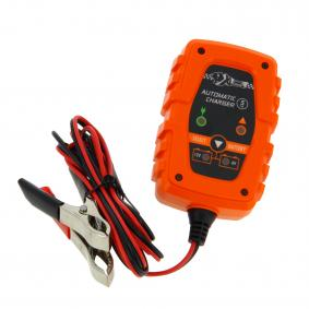 Acculader 553984