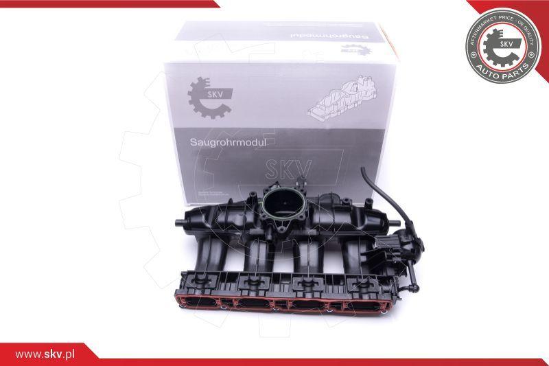 Saugrohrmodul 49SKV003 ESEN SKV 49SKV003 in Original Qualität