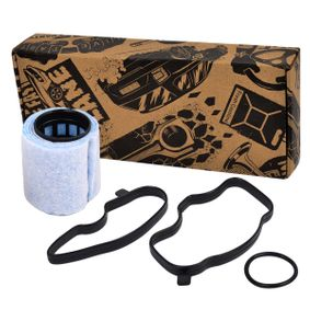Oil Trap, crankcase breather Breather Valve with OEM Number LLJ 500010