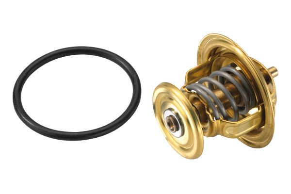 Thermostat WAHLER 4256.80D expert knowledge