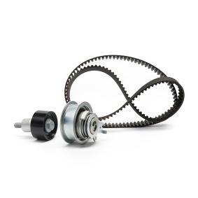 Polo 6R 1.2TSI 16V Zahnriemensatz INA 530 0592 11 (1.2TSI 16V Benzin 2021 CJZC)