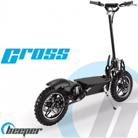 Off-road electric scooters FX1000S