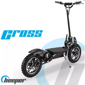 Off-road elektrische step FX1100