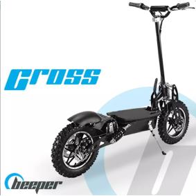 Off-road elektriske scootere FX1100S