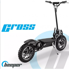 Off-road electric scooters FX1100S