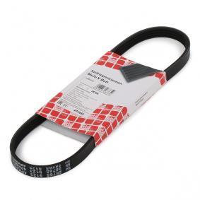 V-Ribbed Belts 28765 PANDA (169) 1.2 MY 2011