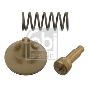 Thermostat, coolant 34978 POLO (9N_) 1.2 MY 2009