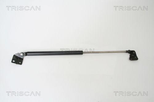 Heckklappendämpfer 8710 69215 TRISCAN 8710 69215 in Original Qualität