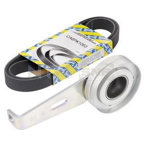 V-Ribbed Belt Set Length: 1063mm, Number of ribs: 6 with OEM Number 9615208280
