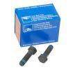 OEM Tornillo, pinza de freno ATE 13819002421