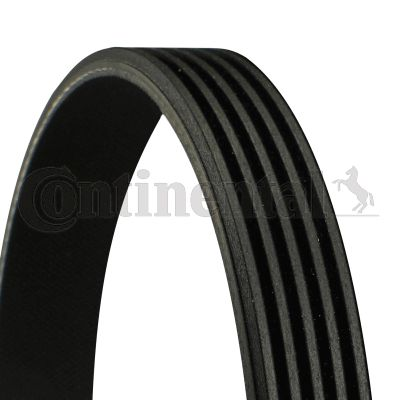 CONTITECH  5PK1310 V-Ribbed Belts Length: 1310mm, Number of ribs: 5