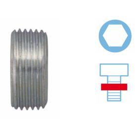 Sealing Plug, oil sump 220127S PANDA (169) 1.2 MY 2010