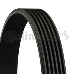 V-Ribbed Belts Length: 1065mm, Number of ribs: 6 with OEM Number 11287838200