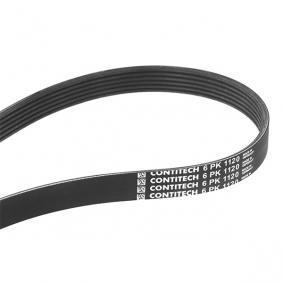 V-Ribbed Belts 6PK1120 OCTAVIA (1U2) 1.6 MY 2004
