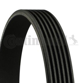 V-Ribbed Belts Length: 1125mm, Number of ribs: 6 with OEM Number 77 00 114 730