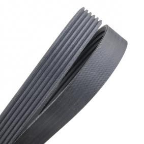 V-Ribbed Belts Length: 1352mm, Number of ribs: 6 with OEM Number 1 011 696