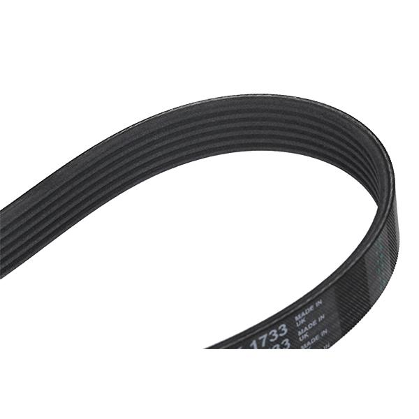 Poly V-Belt 6PK1733 CONTITECH 6PK1733 original quality