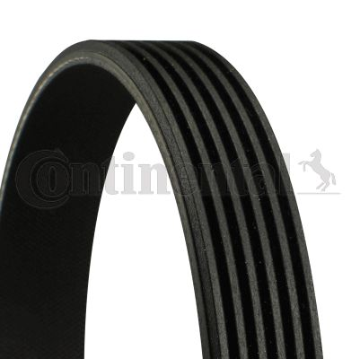 CONTITECH  6PK2315 V-Ribbed Belts Length: 2315mm, Number of ribs: 6