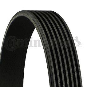 V-Ribbed Belts 7PK1593 RAV 4 II (CLA2_, XA2_, ZCA2_, ACA2_) 2.0 4WD (ACA21, ACA20) MY 2001