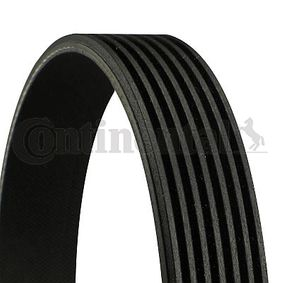V-Ribbed Belts Length: 1760mm, Number of ribs: 7 with OEM Number 38920RBAE02