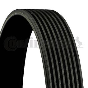 V-Ribbed Belts Length: 1480mm, Number of ribs: 8 with OEM Number 8PK1478 CONTITECH