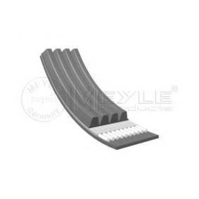 V-Ribbed Belts Length: 795mm, Number of ribs: 4 with OEM Number 5750.76