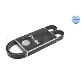 V-Ribbed Belts Length: 1050mm, Number of ribs: 6 with OEM Number 17521-79J50