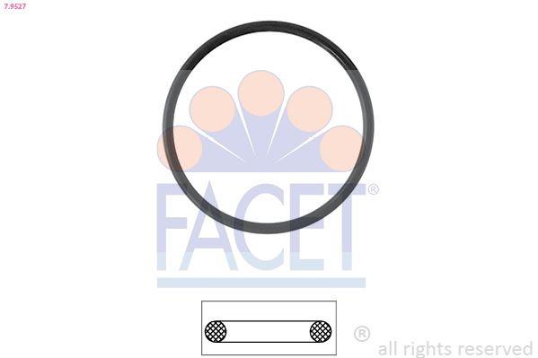 Image of FACET Guarnizione, Termostato 8012510281833